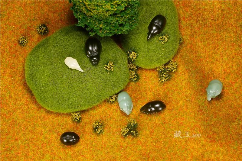 雕虫非小技,也许它们是最贵的昆虫了!